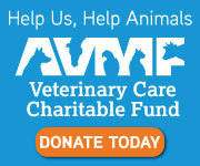 https://www.vccfund.org/forms/donation-form/?ref=1396&company=Trinity+Animal+Hospital